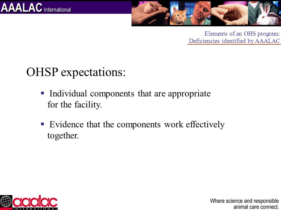 OHSP expectations: Individual components that are appropriate for the facility. Evidence that the components work effectively together. Elements of an