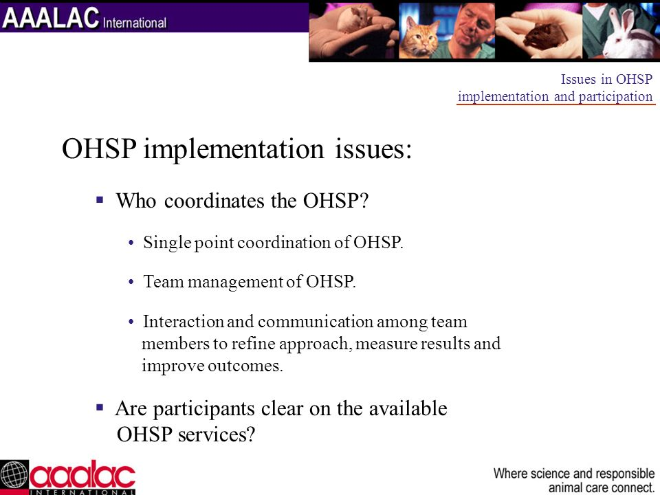 OHSP implementation issues: Who coordinates the OHSP? Single point coordination of OHSP. Team management of OHSP. Interaction and communication among