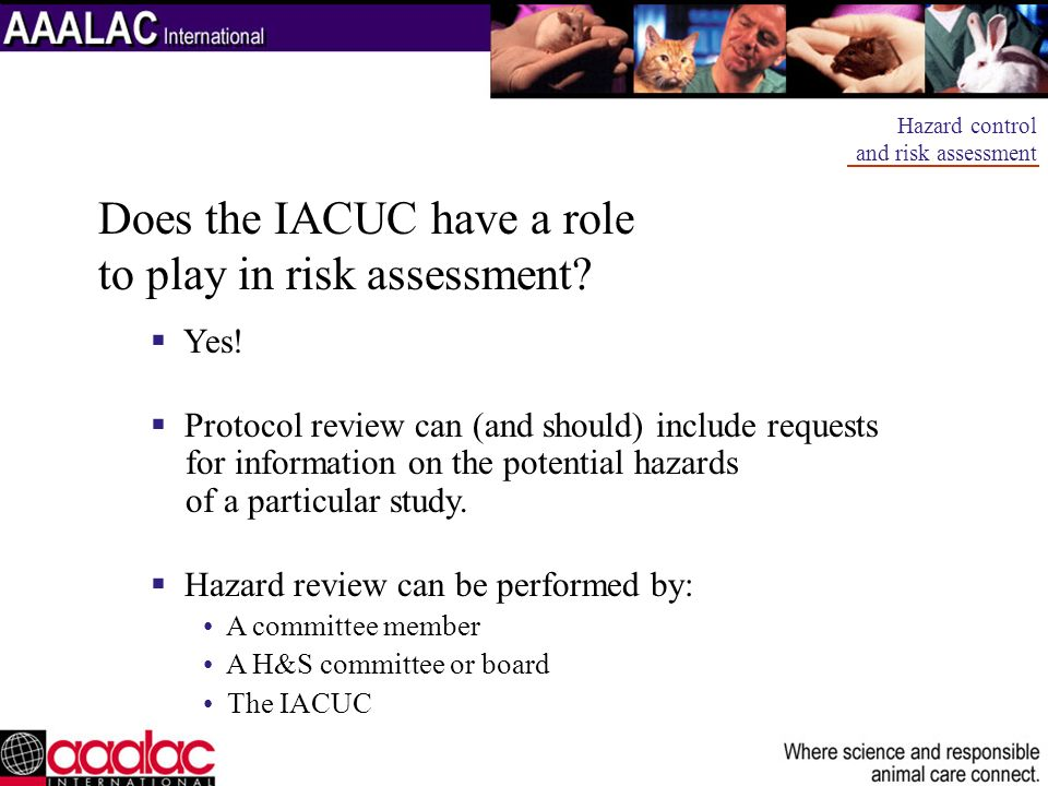 Does the IACUC have a role to play in risk assessment? Yes! Protocol review can (and should) include requests for information on the potential hazards