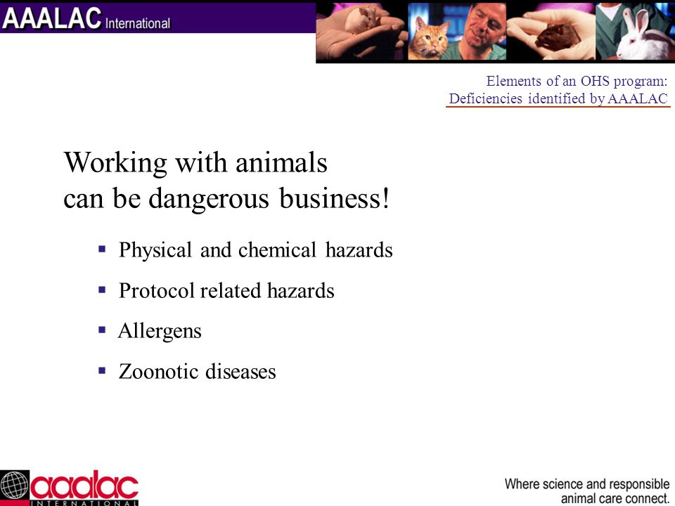 Facilities, Procedures, and Monitoring Elements of an OHS program: Deficiencies identified by AAALAC