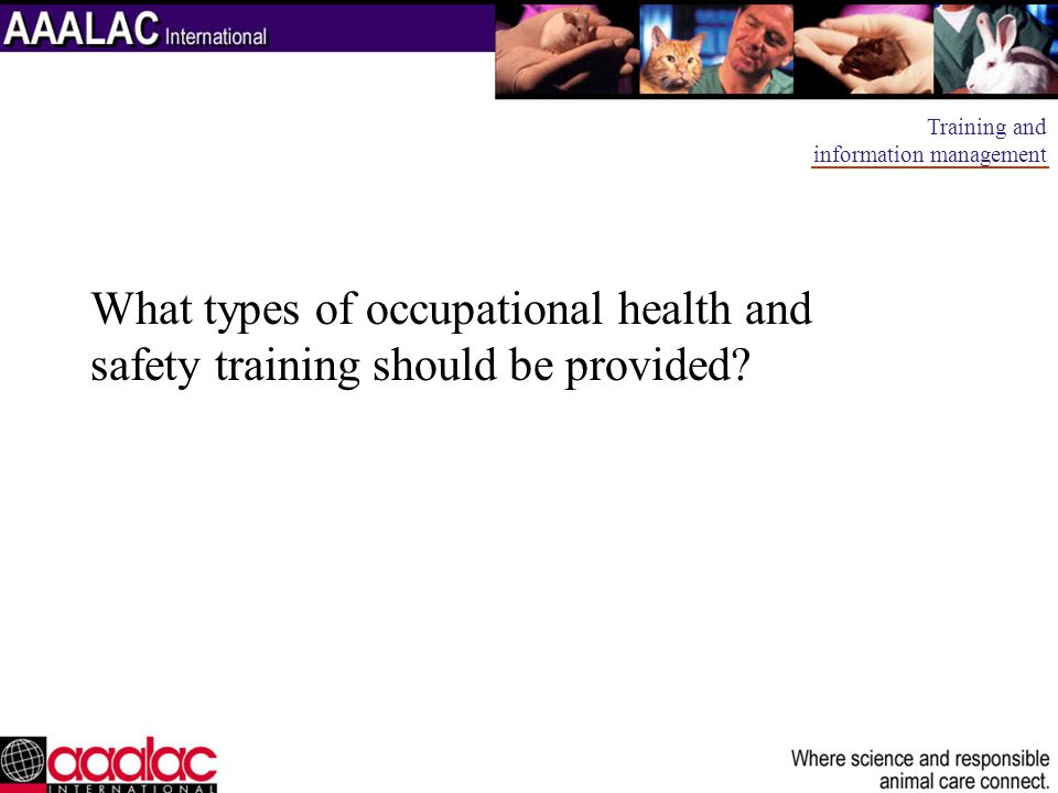 What types of occupational health and safety training should be provided? Training and information management