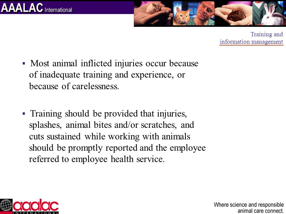 Most animal inflicted injuries occur because of inadequate training and experience, or because of carelessness. Training should be provided that injur