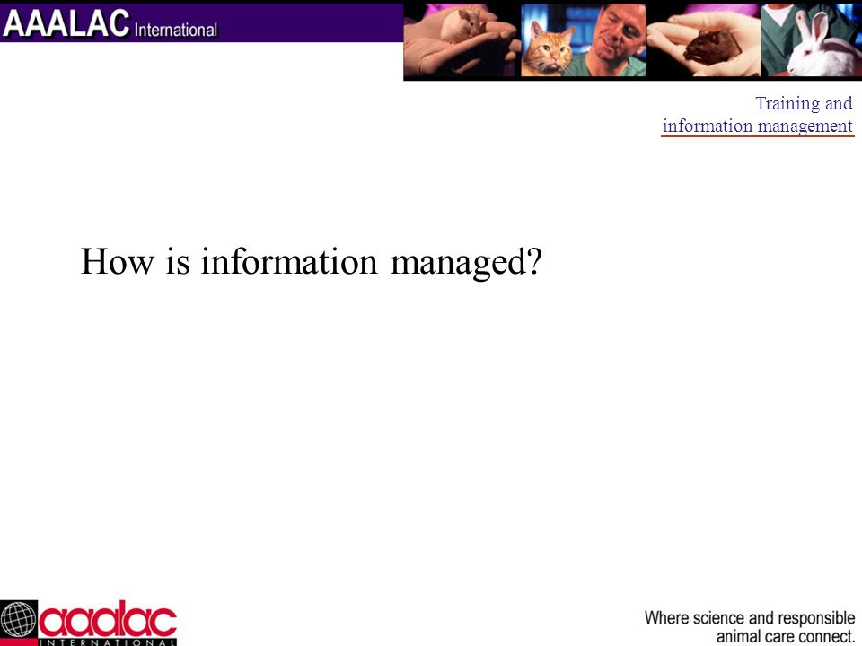 How is information managed? Training and information management