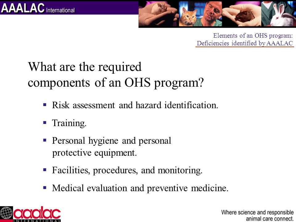 OHSP implementation issues: Who coordinates the OHSP.