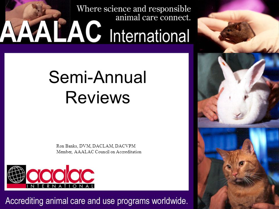 Semi-Annual Reviews Ron Banks, DVM, DACLAM, DACVPM Member, AAALAC Council on Accreditation