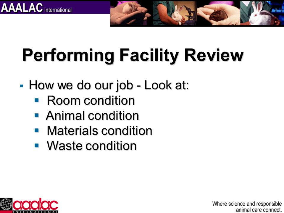 How we do our job - Look at: Room condition Room condition Animal condition Animal condition Materials condition Materials condition Waste condition W