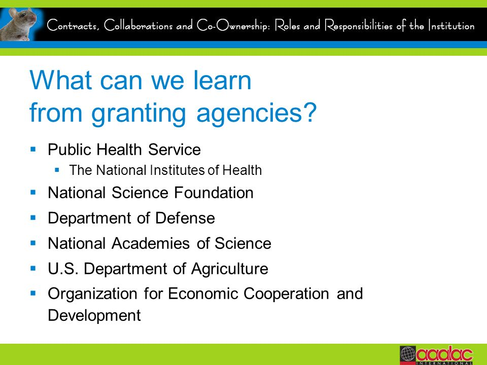 What can we learn from granting agencies? Public Health Service The National Institutes of Health National Science Foundation Department of Defense Na