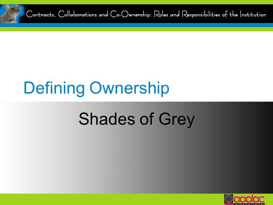 Defining Ownership Shades of Grey