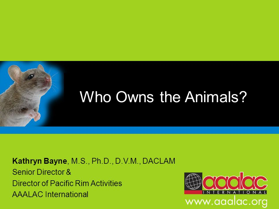 Who Owns the Animals? Kathryn Bayne, M.S., Ph.D., D.V.M., DACLAM Senior Director & Director of Pacific Rim Activities AAALAC International