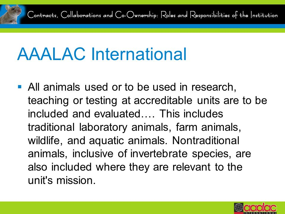 AAALAC International All animals used or to be used in research, teaching or testing at accreditable units are to be included and evaluated…. This inc
