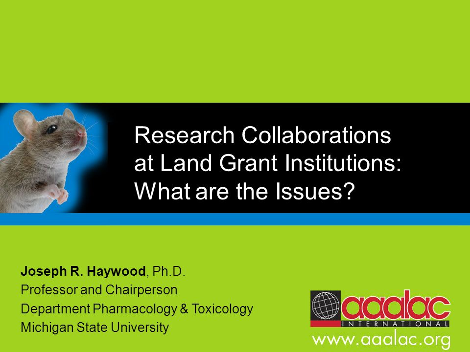 Research Collaborations at Land Grant Institutions: What are the Issues? Joseph R. Haywood, Ph.D. Professor and Chairperson Department Pharmacology &
