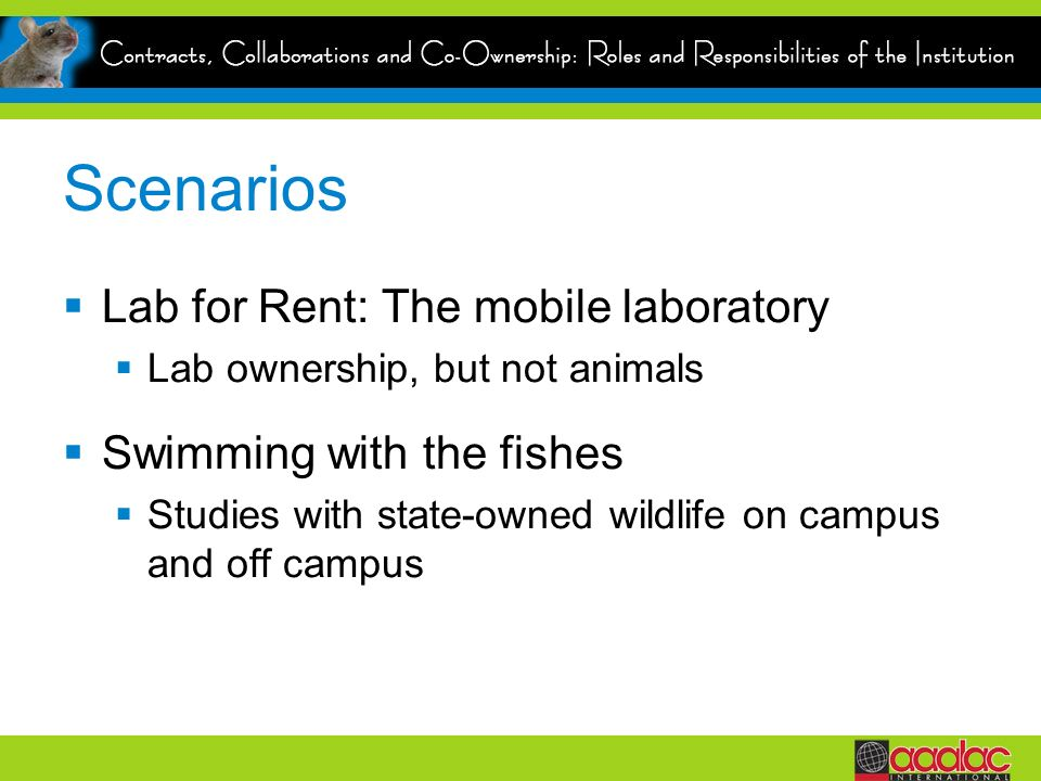 Scenarios Lab for Rent: The mobile laboratory Lab ownership, but not animals Swimming with the fishes Studies with state-owned wildlife on campus and