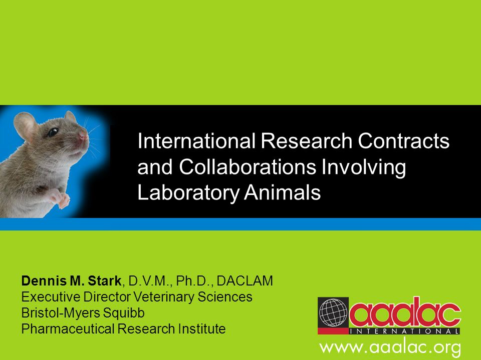 International Research Contracts and Collaborations Involving Laboratory Animals Dennis M. Stark, D.V.M., Ph.D., DACLAM Executive Director Veterinary