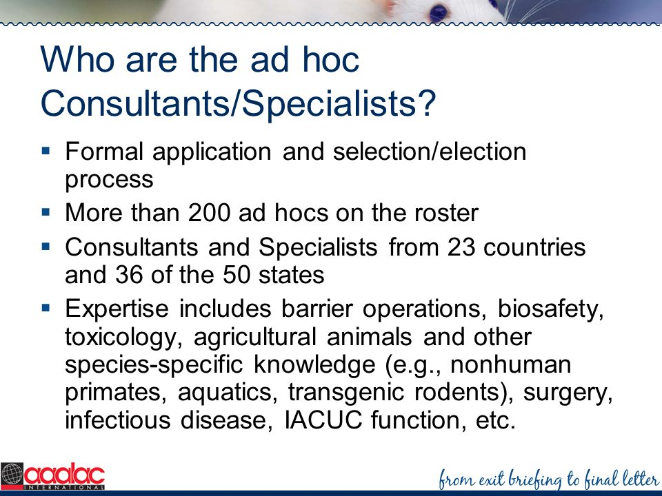 Who are the ad hoc Consultants/Specialists? Formal application and selection/election process More than 200 ad hocs on the roster Consultants and Spec