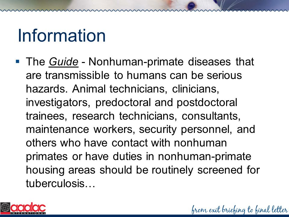 Information The Guide - Nonhuman-primate diseases that are transmissible to humans can be serious hazards. Animal technicians, clinicians, investigato