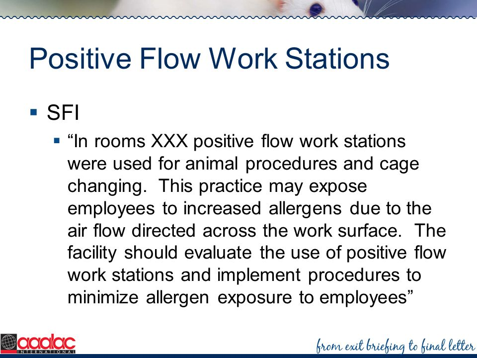 Positive Flow Work Stations SFI In rooms XXX positive flow work stations were used for animal procedures and cage changing. This practice may expose e