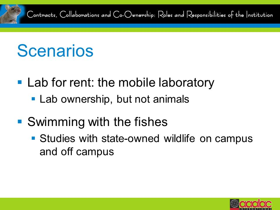 Scenarios Lab for rent: the mobile laboratory Lab ownership, but not animals Swimming with the fishes Studies with state-owned wildlife on campus and off campus