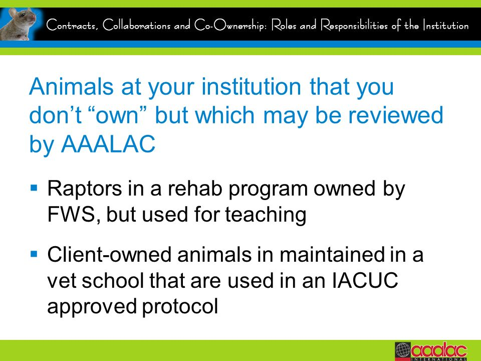 Animals at your institution that you dont own but which may be reviewed by AAALAC Raptors in a rehab program owned by FWS, but used for teaching Client-owned animals in maintained in a vet school that are used in an IACUC approved protocol