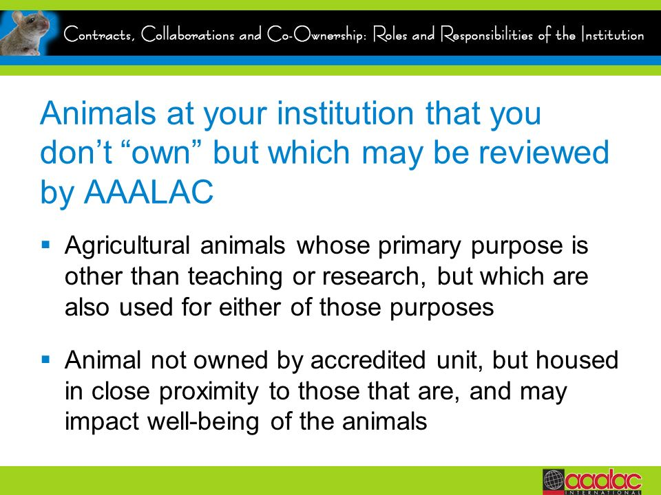 Animals at your institution that you dont own but which may be reviewed by AAALAC Agricultural animals whose primary purpose is other than teaching or research, but which are also used for either of those purposes Animal not owned by accredited unit, but housed in close proximity to those that are, and may impact well-being of the animals