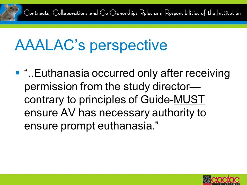 AAALACs perspective..Euthanasia occurred only after receiving permission from the study director contrary to principles of Guide-MUST ensure AV has necessary authority to ensure prompt euthanasia.
