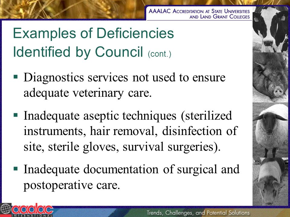 Examples of Deficiencies Identified by Council (cont.) Diagnostics services not used to ensure adequate veterinary care.