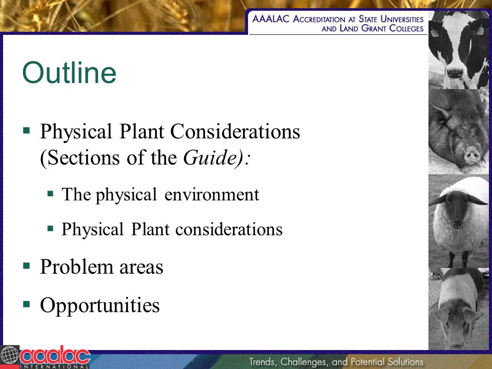 Outline Physical Plant Considerations (Sections of the Guide): The physical environment Physical Plant considerations Problem areas Opportunities