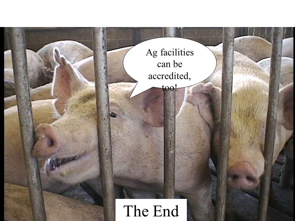 Ag facilities can be accredited, too! The End