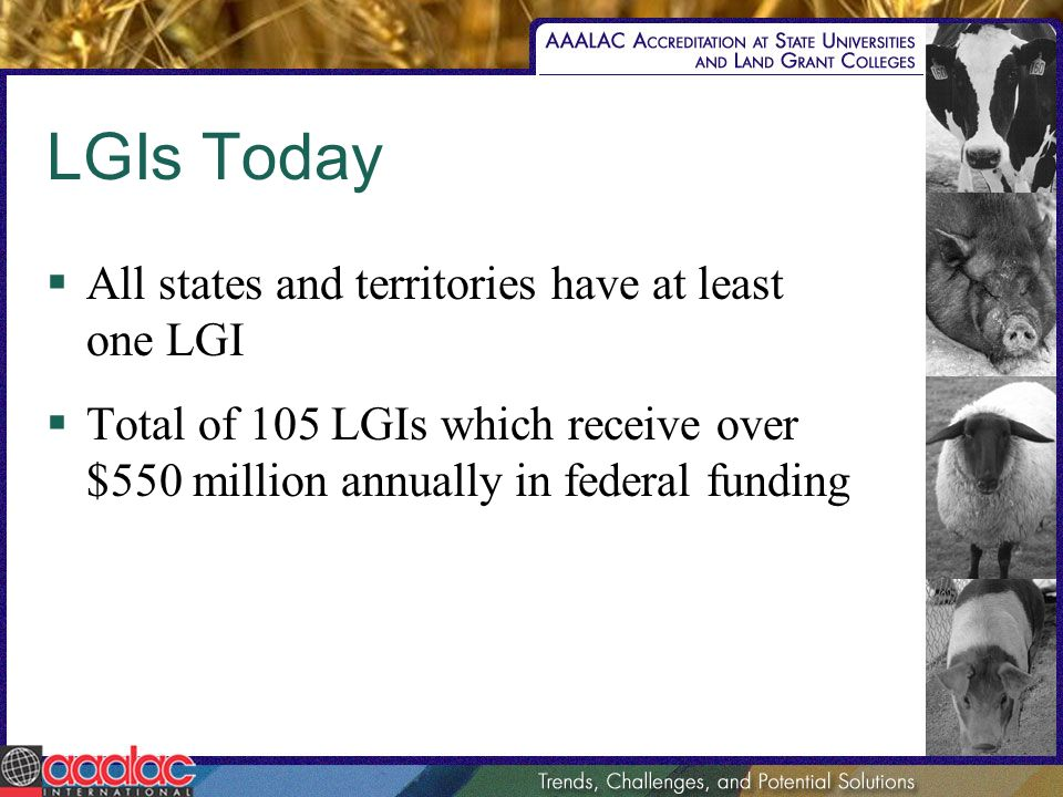 LGIs Today All states and territories have at least one LGI Total of 105 LGIs which receive over $550 million annually in federal funding
