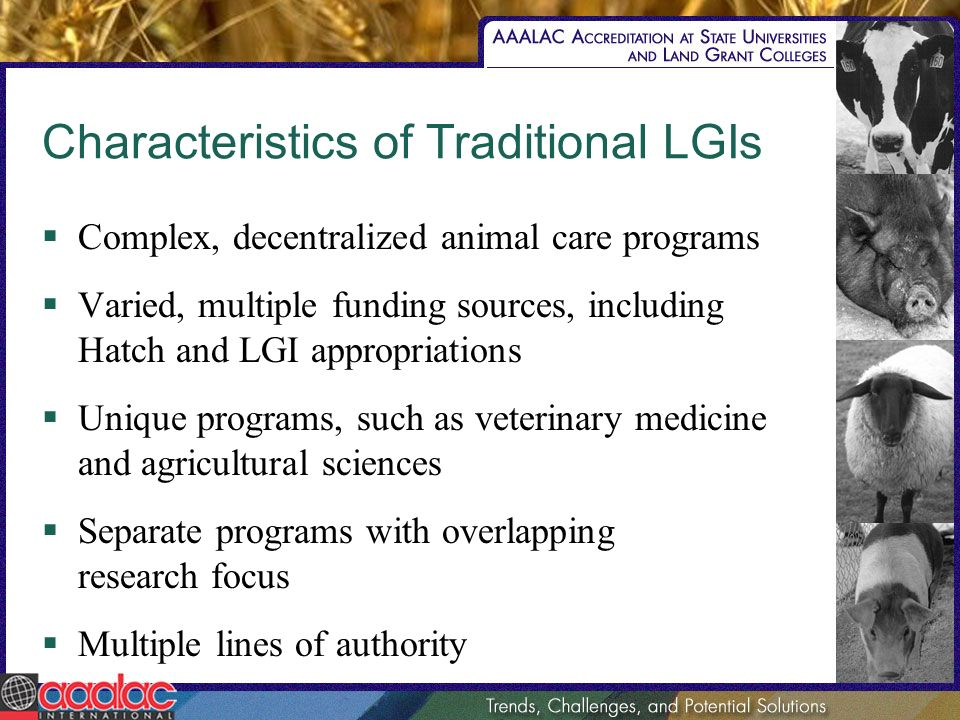 Characteristics of Traditional LGIs Complex, decentralized animal care programs Varied, multiple funding sources, including Hatch and LGI appropriatio