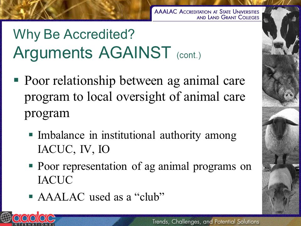 Why Be Accredited? Arguments AGAINST (cont.) Poor relationship between ag animal care program to local oversight of animal care program Imbalance in i