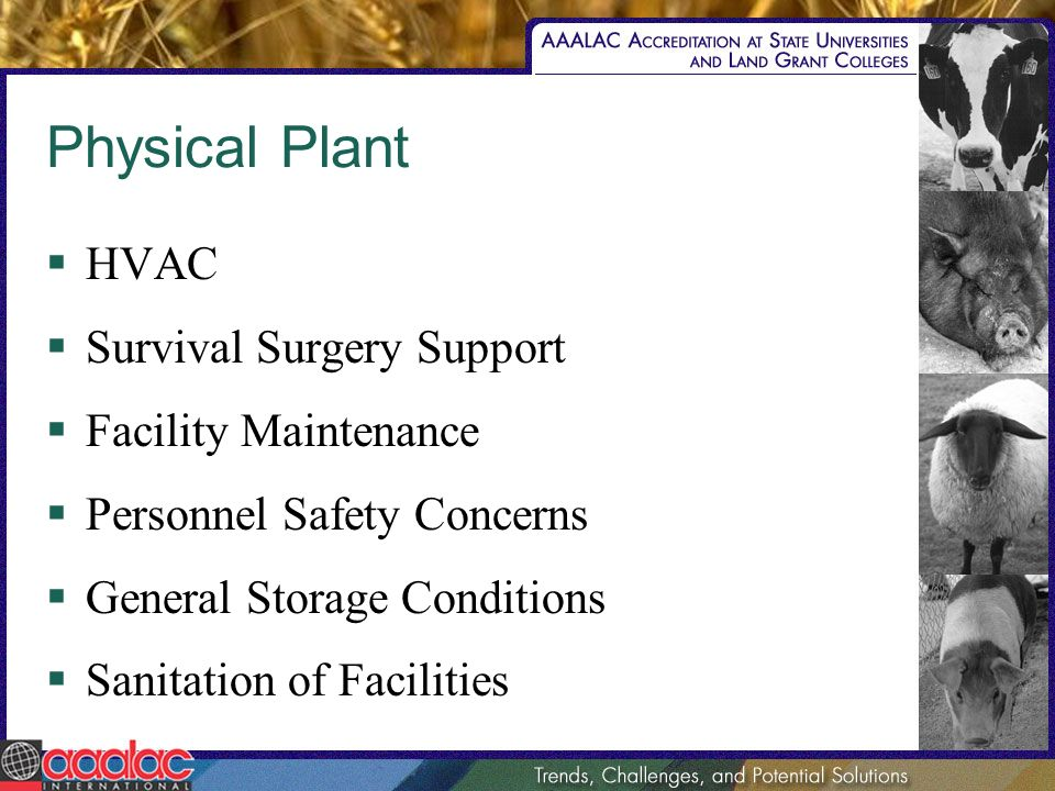Physical Plant HVAC Survival Surgery Support Facility Maintenance Personnel Safety Concerns General Storage Conditions Sanitation of Facilities