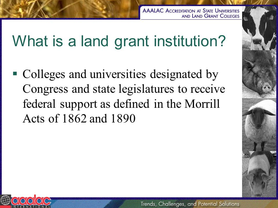 What is a land grant institution.