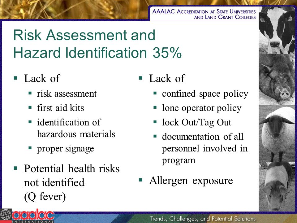 Risk Assessment and Hazard Identification 35% Lack of risk assessment first aid kits identification of hazardous materials proper signage Potential he