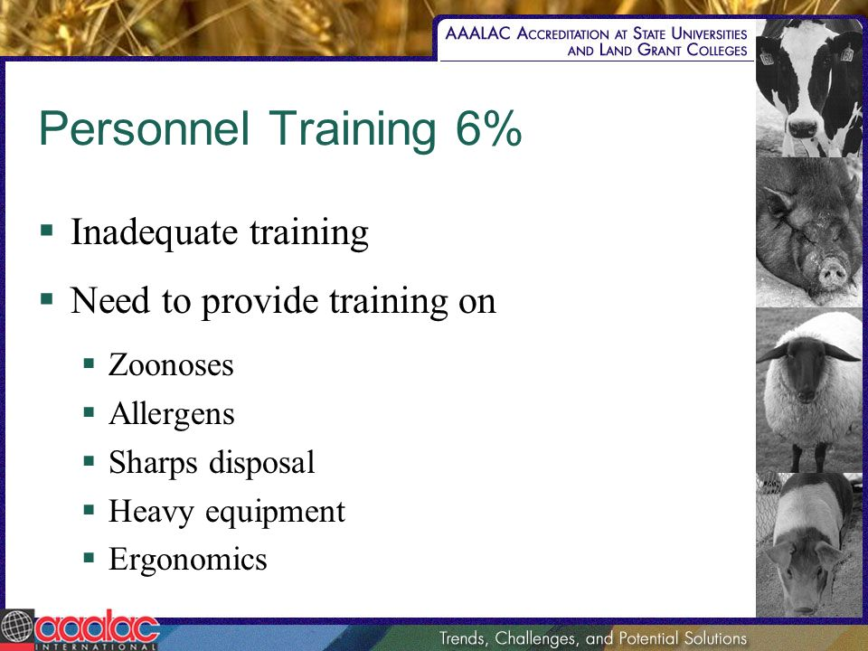 Personnel Training 6% Inadequate training Need to provide training on Zoonoses Allergens Sharps disposal Heavy equipment Ergonomics