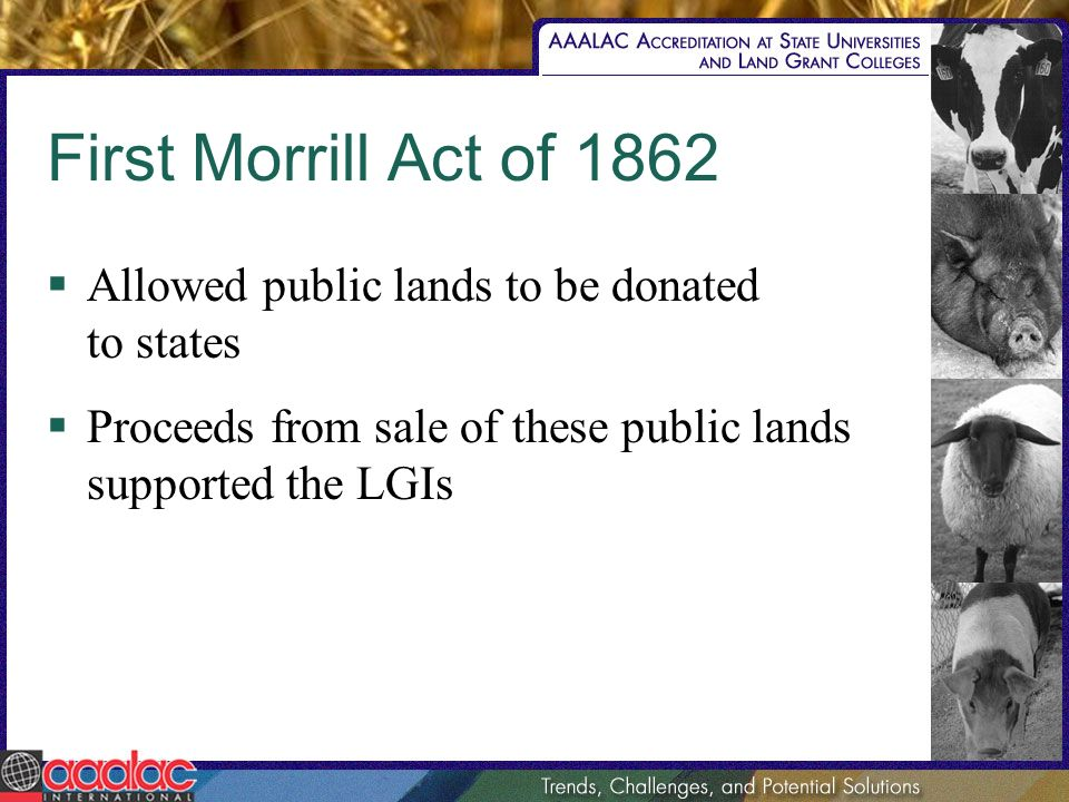 First Morrill Act of 1862 Allowed public lands to be donated to states Proceeds from sale of these public lands supported the LGIs