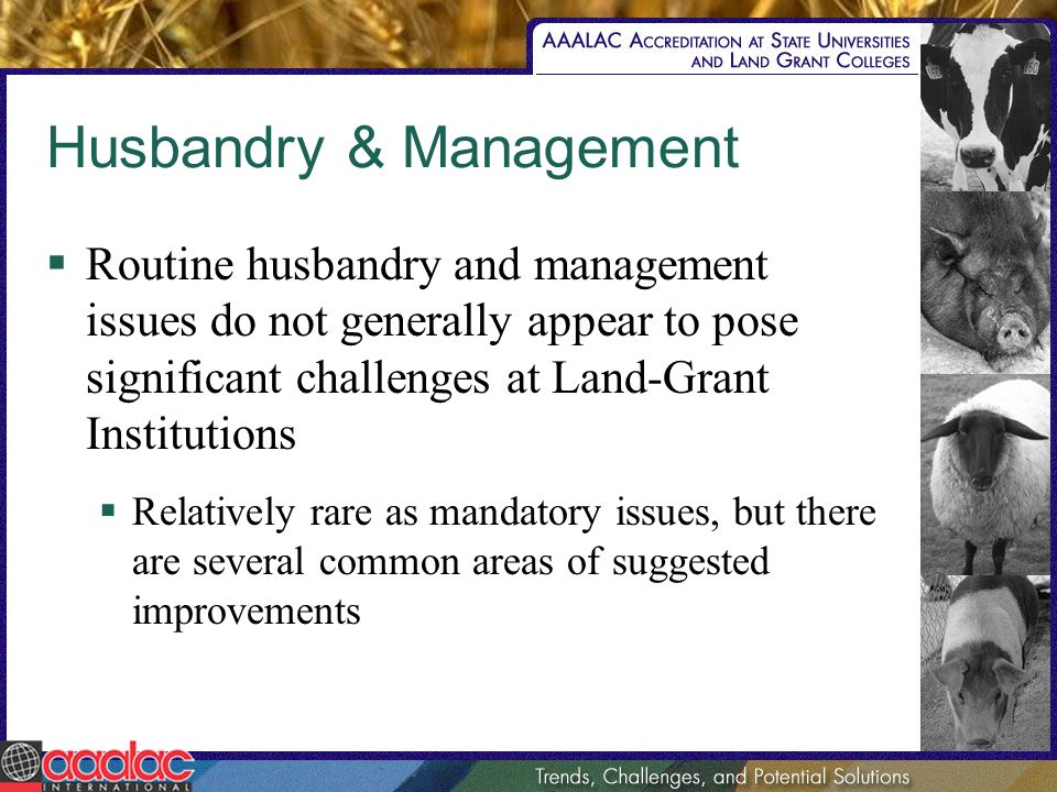Husbandry & Management Routine husbandry and management issues do not generally appear to pose significant challenges at Land-Grant Institutions Relat