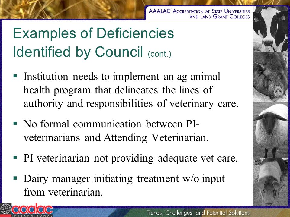 Examples of Deficiencies Identified by Council (cont.) Institution needs to implement an ag animal health program that delineates the lines of authori