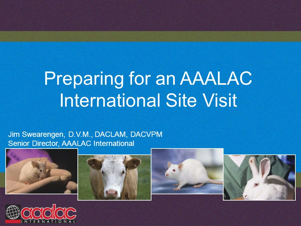 Preparing for an AAALAC International Site Visit Jim Swearengen, D.V.M., DACLAM, DACVPM Senior Director, AAALAC International