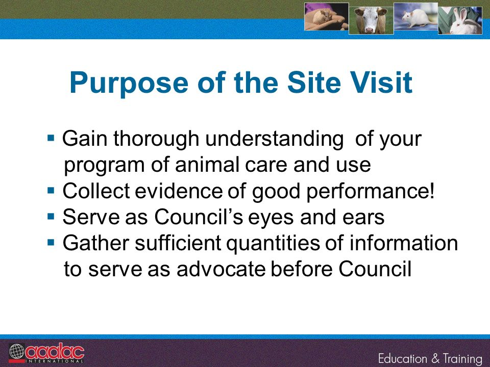Gain thorough understanding of your program of animal care and use Collect evidence of good performance! Serve as Councils eyes and ears Gather suffic