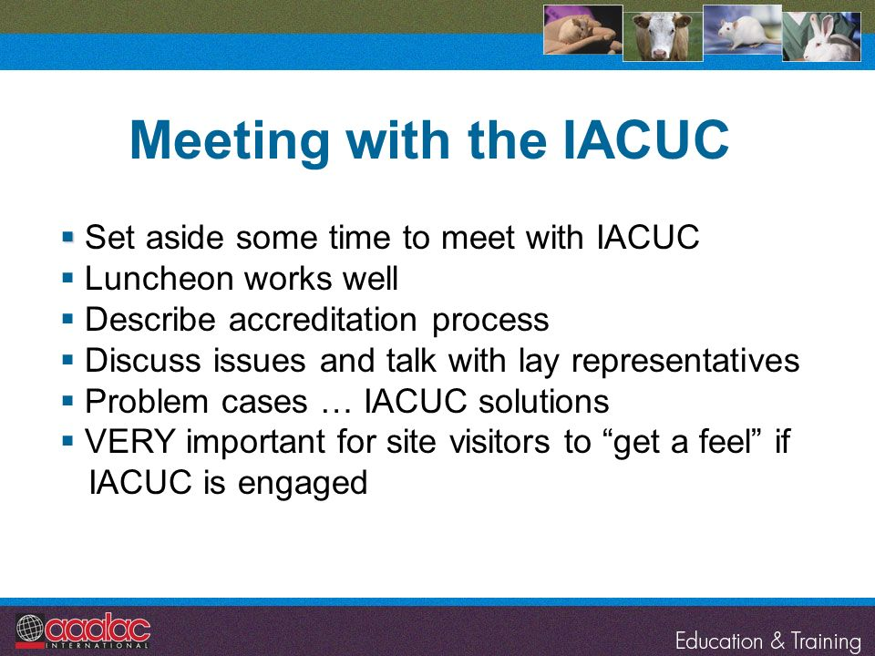 Set aside some time to meet with IACUC Luncheon works well Describe accreditation process Discuss issues and talk with lay representatives Problem cas