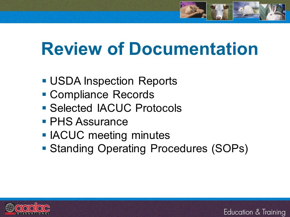 USDA Inspection Reports Compliance Records Selected IACUC Protocols PHS Assurance IACUC meeting minutes Standing Operating Procedures (SOPs) Review of