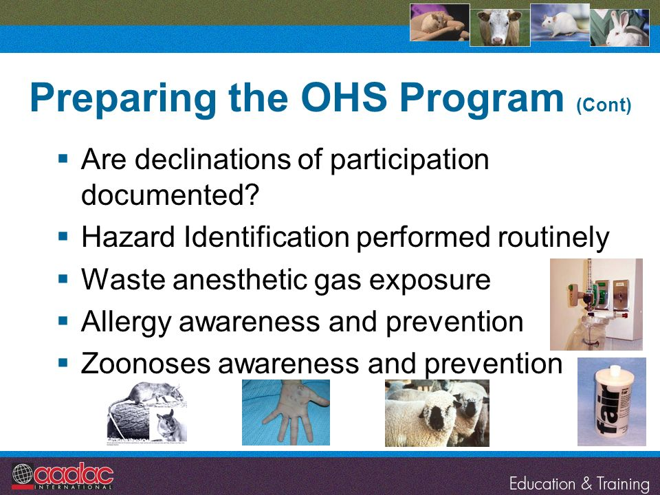 Preparing the OHS Program (Cont) Are declinations of participation documented? Hazard Identification performed routinely Waste anesthetic gas exposure