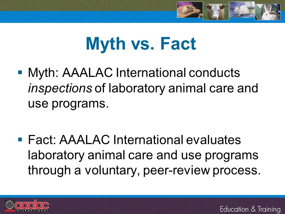 Myth vs. Fact Myth: AAALAC International conducts inspections of laboratory animal care and use programs. Fact: AAALAC International evaluates laborat
