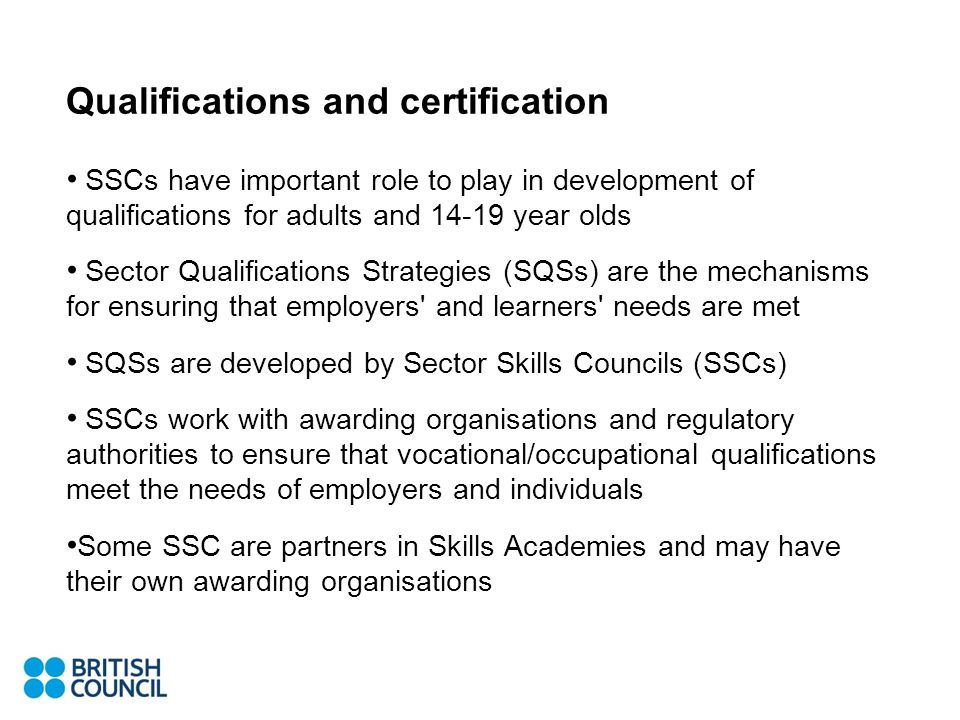 Qualifications and certification SSCs have important role to play in development of qualifications for adults and year olds Sector Qualifications Strategies (SQSs) are the mechanisms for ensuring that employers and learners needs are met SQSs are developed by Sector Skills Councils (SSCs) SSCs work with awarding organisations and regulatory authorities to ensure that vocational/occupational qualifications meet the needs of employers and individuals Some SSC are partners in Skills Academies and may have their own awarding organisations