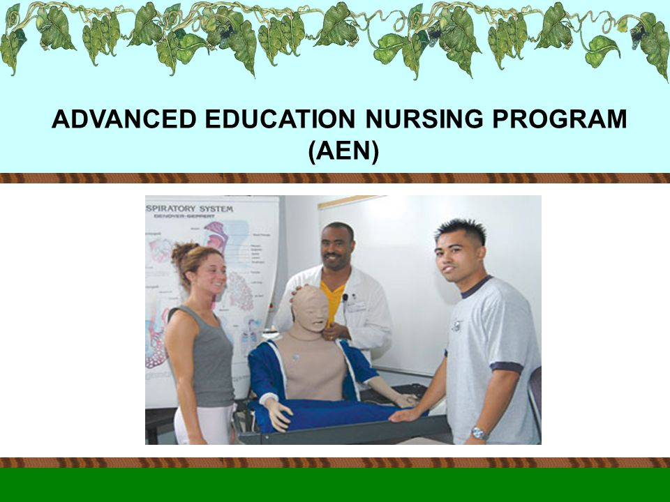ADVANCED EDUCATION NURSING PROGRAM (AEN)