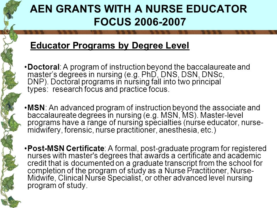 AEN GRANTS WITH A NURSE EDUCATOR FOCUS 2006-2007 Educator Programs by Degree Level Doctoral: A program of instruction beyond the baccalaureate and masters degrees in nursing (e.g.