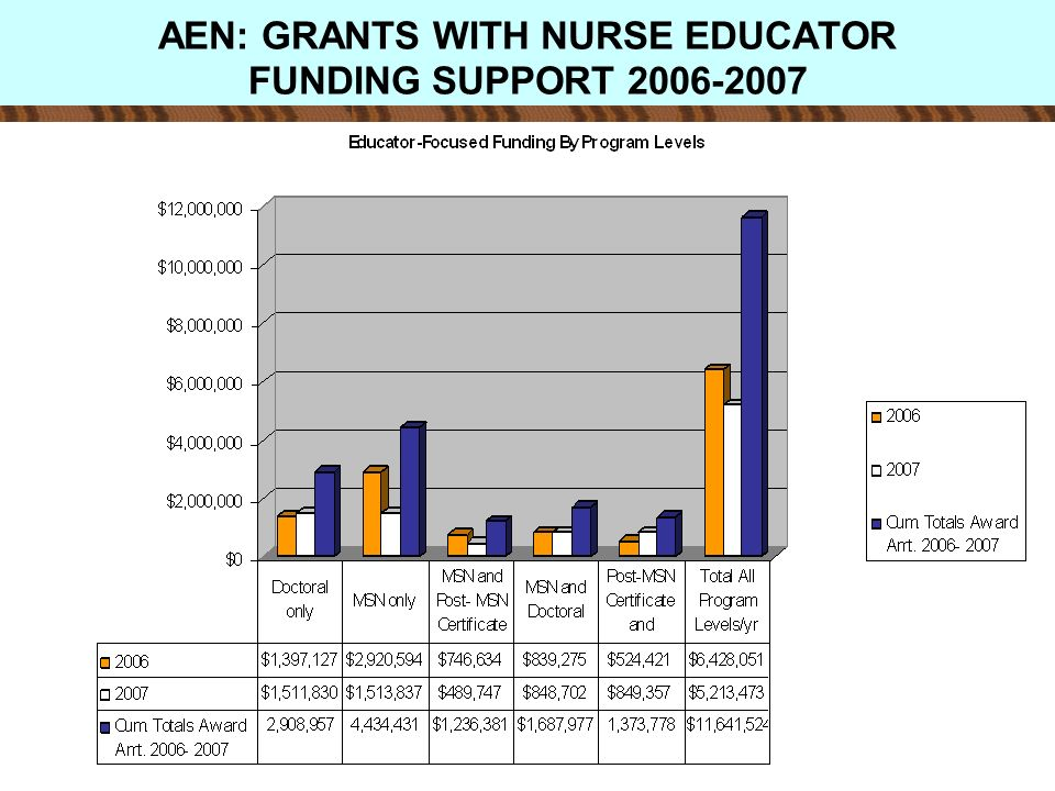 AEN: GRANTS WITH NURSE EDUCATOR FUNDING SUPPORT 2006-2007