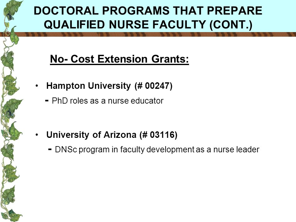 DOCTORAL PROGRAMS THAT PREPARE QUALIFIED NURSE FACULTY (CONT.) No- Cost Extension Grants: Hampton University (# 00247) - PhD roles as a nurse educator University of Arizona (# 03116) - DNSc program in faculty development as a nurse leader