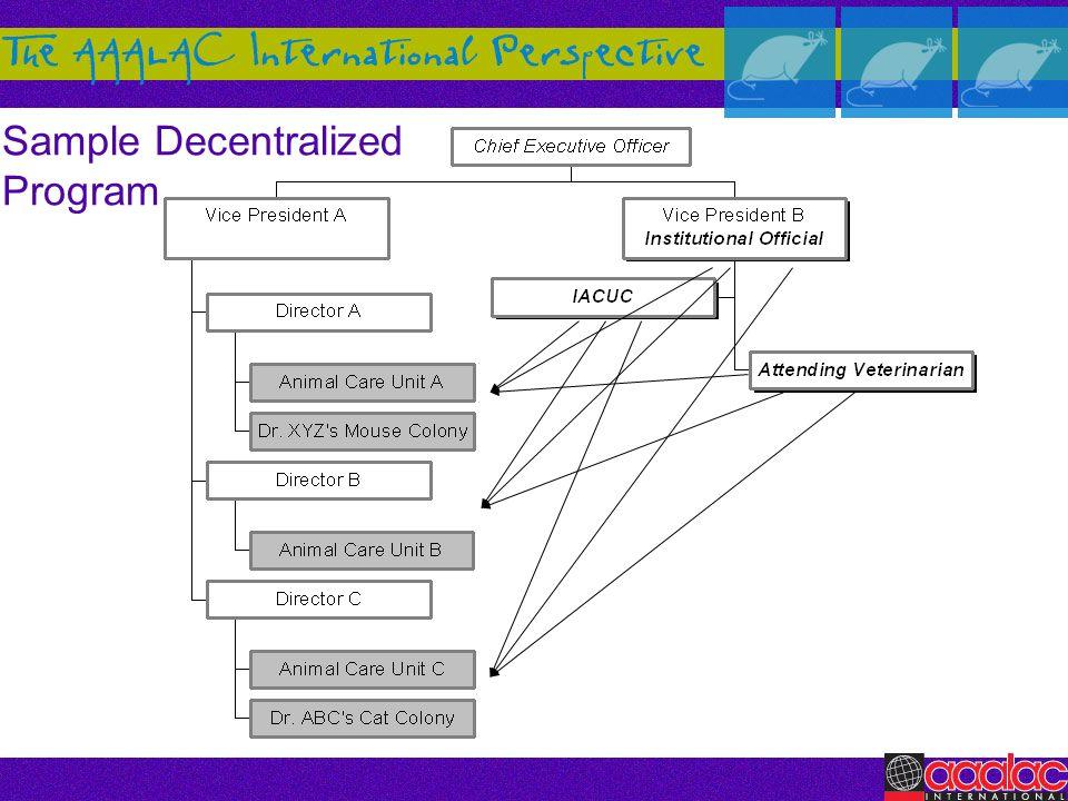 Sample Decentralized Program
