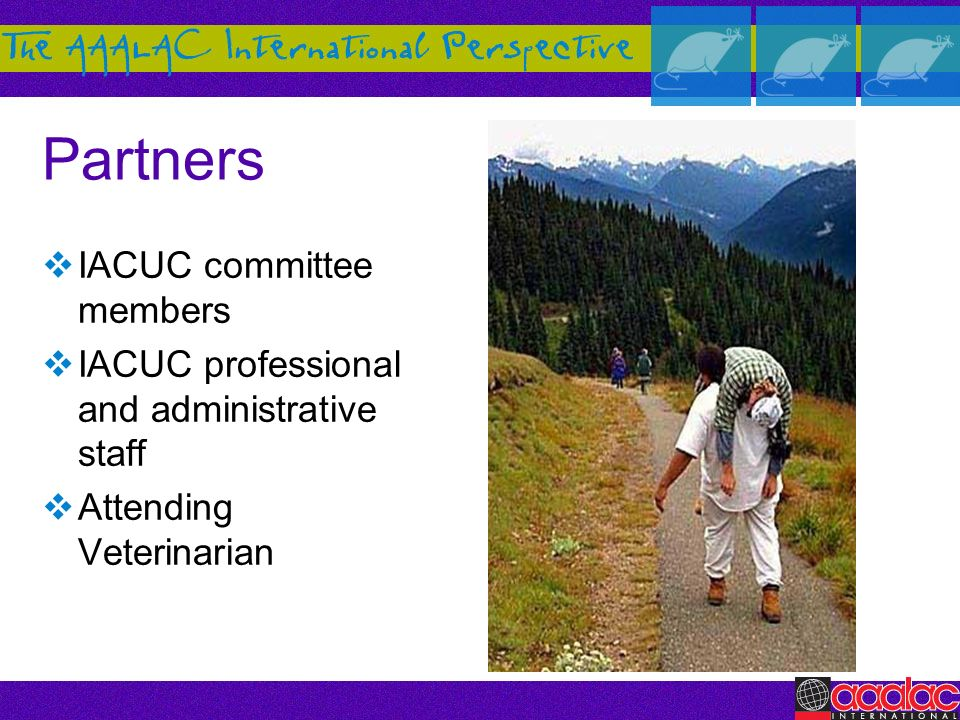 Partners IACUC committee members IACUC professional and administrative staff Attending Veterinarian